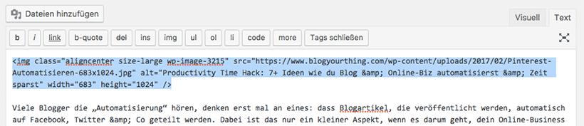 How To: So versteckst du ein für Pinterest optimiertes Bild - HTML Code des Bildes suchen